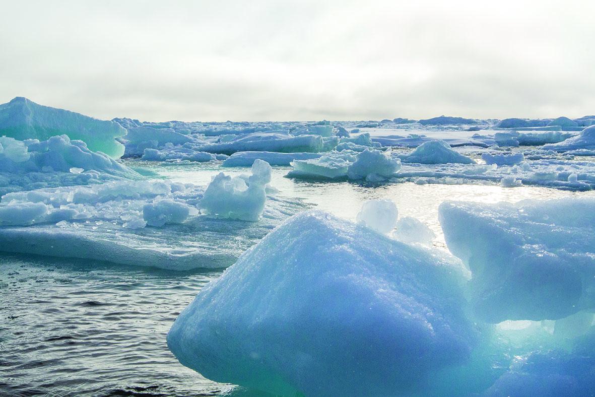 LDD Pierre Mann Antarctique